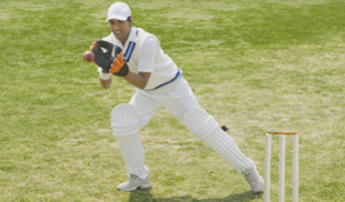 http://cache.graphicslib.viator.com/graphicslib//mm/cricket_35046_1.jpg