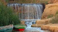 Private Full-Day Fayoum Oasis and Waterfalls of Wadi El-Rayan Tour from Cairo
