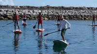 Stand Up Paddle on the Lisbon Coast