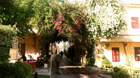 Athens Food and Modern Culture Private Walking Tour in the Old Town