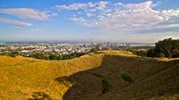 Private Tour: Auckland City and Countryside Tour, Auckland CBD Tours and Sightseeing