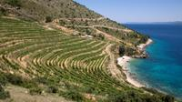 8-Day Dalmatia Home of Zinfandel Grape Tour from Split