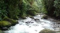Private 2-Day Mindo Cloud Forest from Quito image 1