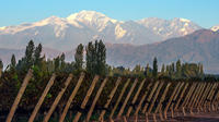 Private Wine Tour of Uco Valley from Mendoza