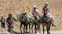 Private Tour: Middle Atlas Excursion from Fez
