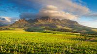 Cape Winelands Tour from Cape Town