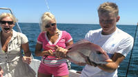 Full-Day Reef Fishing from Albufeira