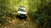 Barron Gorge and Kuranda National Park Half Day Rainforest and Waterfall 4WD Tour from Cairns image 1