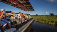 Photographic River Cruise on The Chobe