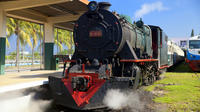 Half-Day North Borneo Steam Engine Train from Kota Kinabalu