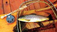 Brown Trout Fly Fishing Day Tour in Lough Corrib County Galway image 1