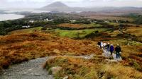 Connemara National Park Nature Trails Self-Guided Day Tour including Lunch image 1