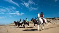 Day Trip: Guided Wild Atlantic Way Beach Horseback Ride from Galway