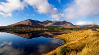 Explore Connemara National Park - 1-Day Self Guided Tour from Galway image 1