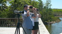 Half Day Bird Watching Tour