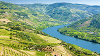 Semi-Private Tour: Wine Region in Douro Valley