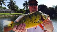 4-hour Bass Fishing Trip near Boca Raton