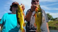 6-hour Bass Fishing Trip near Boca Raton