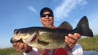 6-hour Rodman Reservoir Fishing Trip near Gainesville