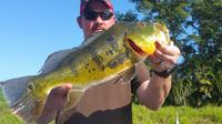8-hour Bass Fishing Trip near Boca Raton