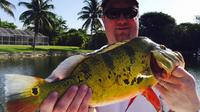Half Day Bass Fishing Trip near Boca Raton