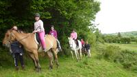 Scenic 1-Hour Horseback Ride Through Unspoiled Mountain Pastures in Tipperary image 1