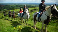 Scenic Horseback Riding Tour through Unspoiled Mountain Pastures of Tipperary image 1