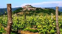 7-Day Istrian Wine Trail Tour from Pula