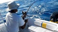 Barbados Bottom Fishing Tour image 1