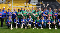 The Kilkenny Way: Ultimate Hurling Experience image 1