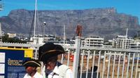 V and A Waterfront Historical Guided Walking Tour in Cape Town