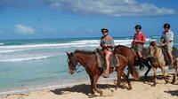 2-Hour Horseback Riding Adventure from Punta Cana