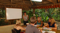 1- or 2-Week Spanish Immersion Program in Tamarindo