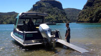 Discover Whangaroa Harbour Boat Tour, Whangaroa Tours and Sightseeing