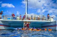 Catamaran Party Cruise and Dunn's River Falls Tour from Runaway Bay