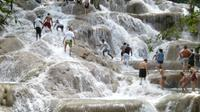 Dunn's River Falls and Luminous Lagoon Tour from Montego Bay and Grand Palladium