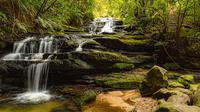 Blue Mountains Sightseeing Photography Tour image 1