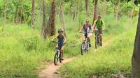 Half-Day Family Bike Tour in Koh Phangan