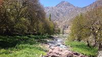 Full-Day Atlas Mountains and Berber Villages Private Tour from Marrakech