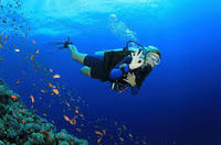 PADI Open Water Course in Gran Canaria