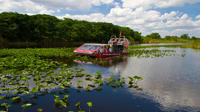 Everglades Airboat and Alligator Tour from Miami or Fort Lauderdale Port or Airport Private Car Transfers
