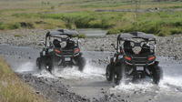 Day Trip to the Golden Circle plus 1-hour Buggy Tour from Reykjavik