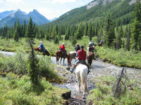 Horseback Riding Tour in Banff with BBQ Lunch