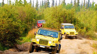 Full-Day Offroading in the Carpathians from Bucharest