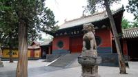 3-hour Shaolin Temple Walking Tour