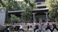 30-Day Shaolin Temple Kung Fu Experience from Beijing