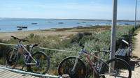Moncarapacho - Tavira mountain and hybrid bike tour