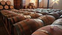 Full-Day Wineries Tour from Santiago