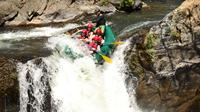 Adventure Rafting Class III and IV in Tenorio River from Playa Tamarindo