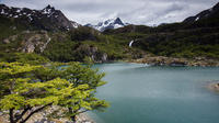 Tierra del Fuego National Park Private tour image 1
